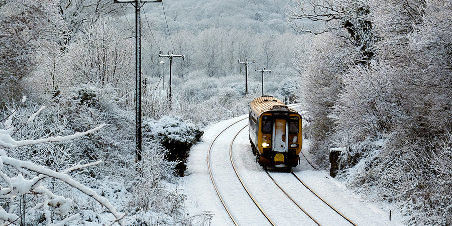 The Bittern Line in Snow © Gerry Balding (Flickr)