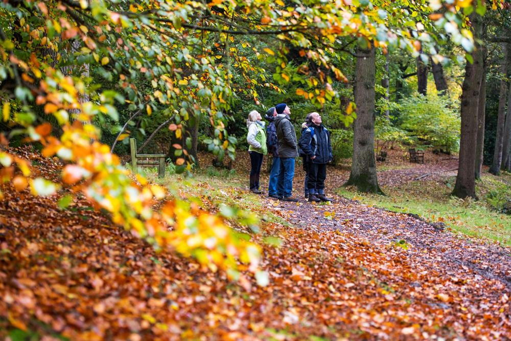 Autumn walk at Fairhaven