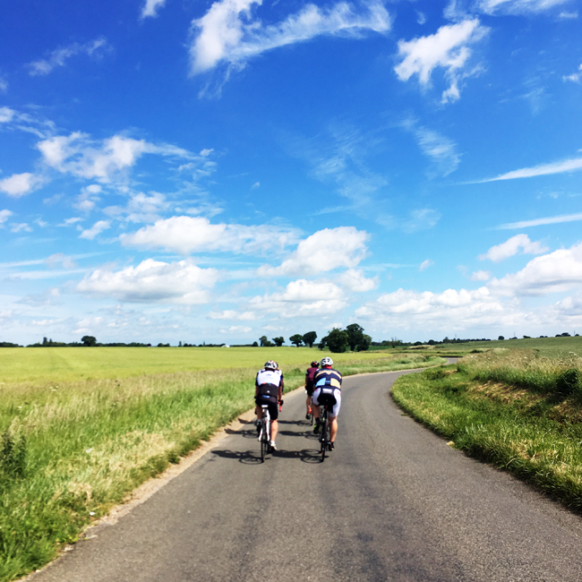 Cycling with the Yorkies